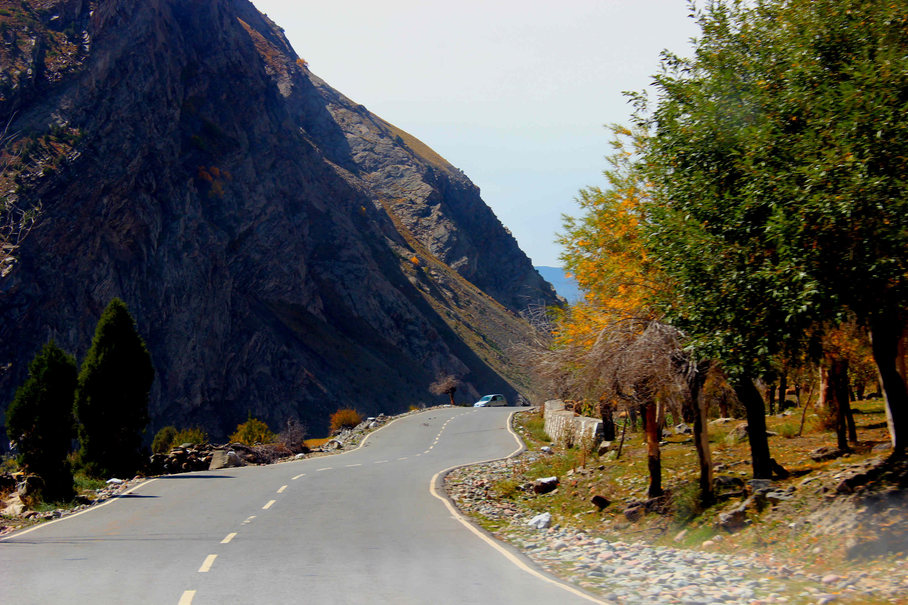 Jispa Village