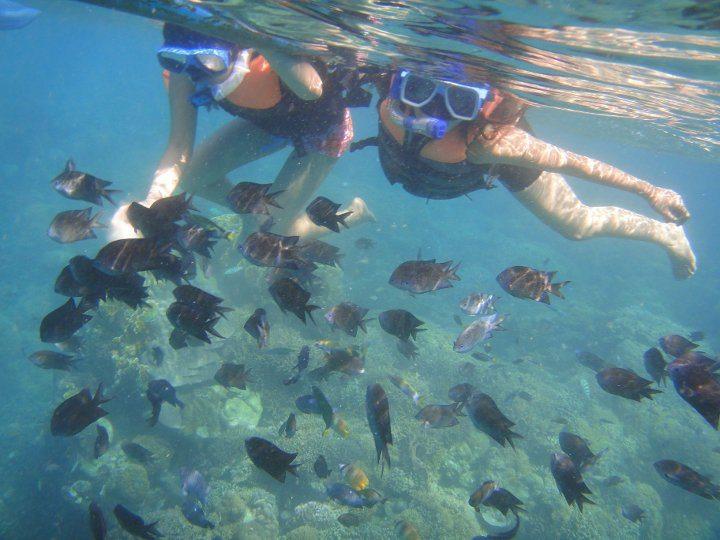 PG snorkeling